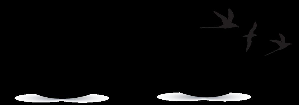 free logo creator create infinity birds logo with the infinity symbol vector art free infinity symbol vector illustrator
