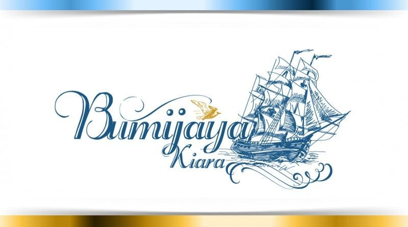 Custom Logo Design vintage ship
