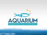custom logo design aqwa fish logo