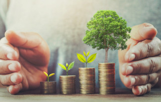 The Importance of Business Growth and How to Manage It